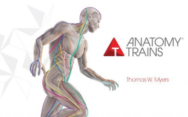 Anatomy Trains® in Structure & Function